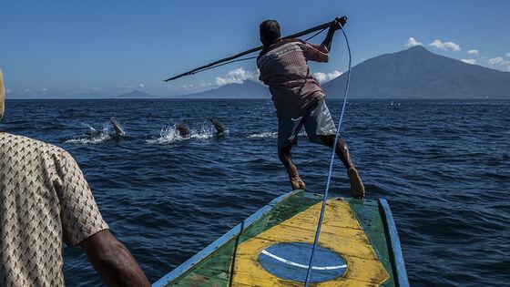 To menn på båt, den ene jakter på en hval som svømmer i havet.